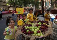 Apple Day (4)